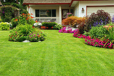 A manicured lawn and garden